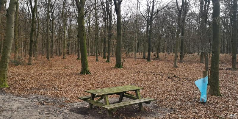 Westerborkpad - Etappe 12  (7)  (Foto: FOK!)