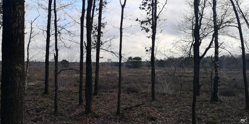 Westerborkpad - Etappe 12  (10)  (Foto: FOK!)
