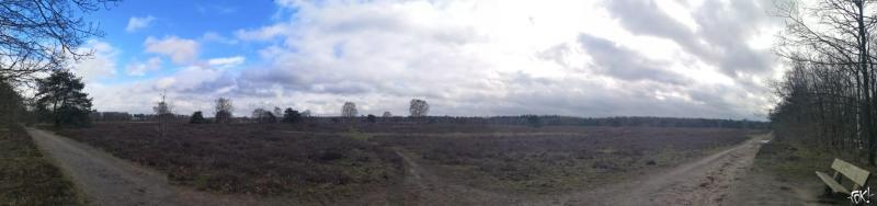 Westerborkpad - Etappe 12  (11)  (Foto: FOK!)