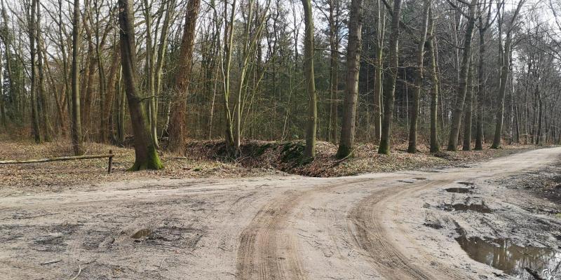 Westerborkpad - Etappe 12  (8)  (Foto: FOK!)