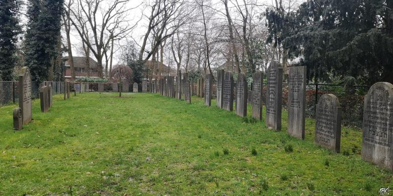 Westerborkpad - Etappe 12  (20)  (Foto: FOK!)