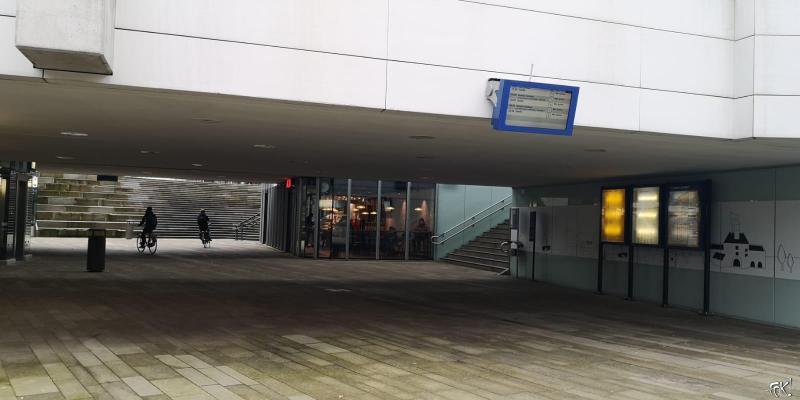 Westerborkpad - Etappe 12  (21)  (Foto: FOK!)