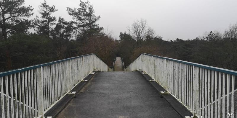 Westerborkpad - Etappe 13  (17)  (Foto: FOK!)