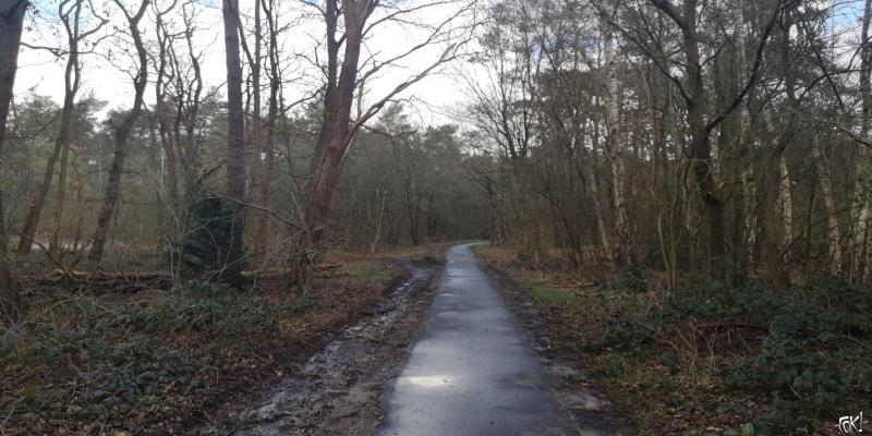 Westerborkpad - Etappe 14 (1)  (Foto: FOK!)