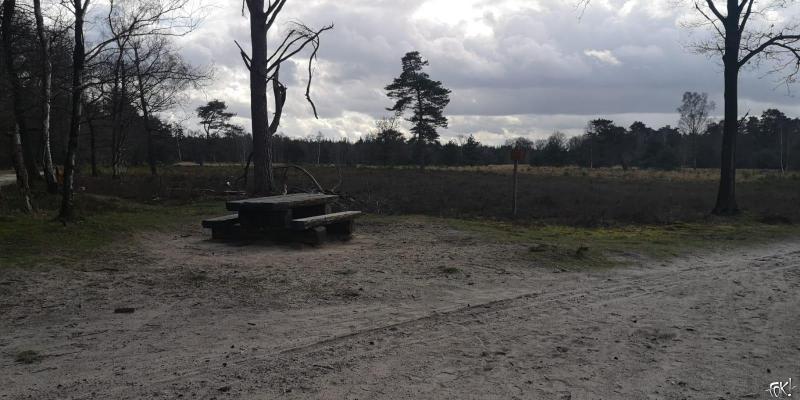 Westerborkpad - Etappe 14 (5)  (Foto: FOK!)