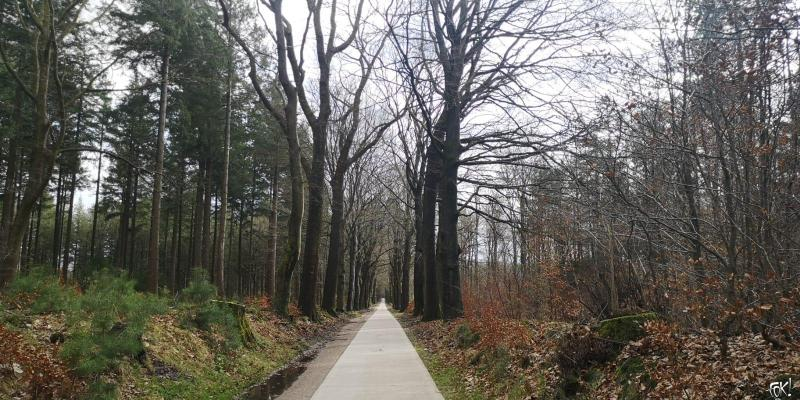 Westerborkpad - Etappe 14 (7)  (Foto: FOK!)