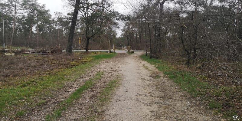 Westerborkpad - Etappe 15 (8) (Foto: FOK!)