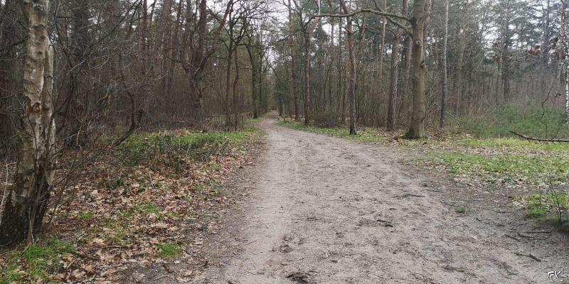 Westerborkpad - Etappe 15 (10) (Foto: FOK!)