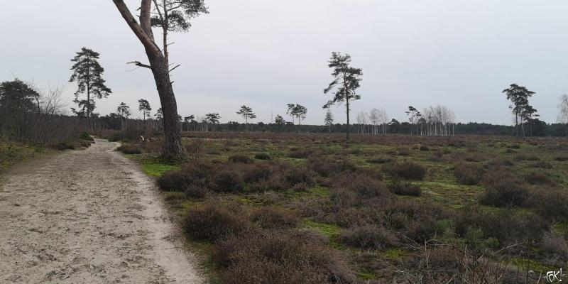 Westerborkpad - Etappe 15 (12) (Foto: FOK!)