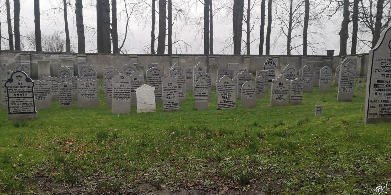 Westerborkpad - Etappe 16 (13)  (Foto: FOK!)