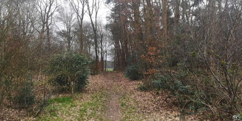 Westerborkpad - Etappe 16 (22)  (Foto: FOK!)