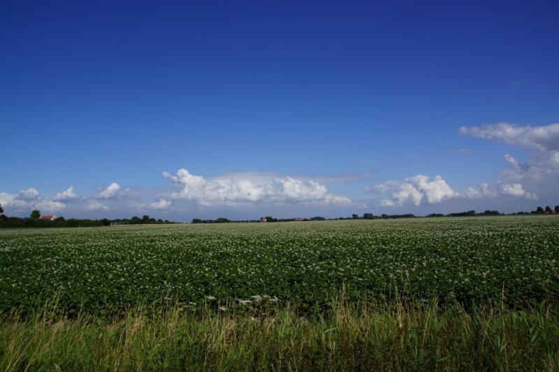 Zon en stapelwolkjes (Foto: Scherpschutter)