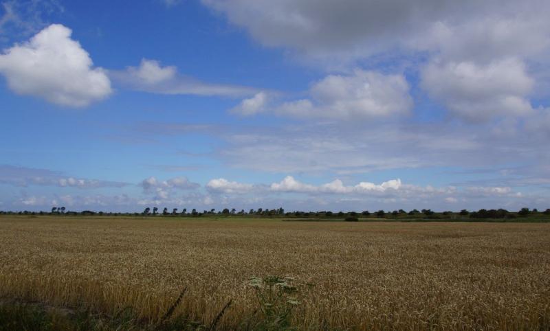 Het boerenland van Zeeland (Foto: Scherpschutter)
