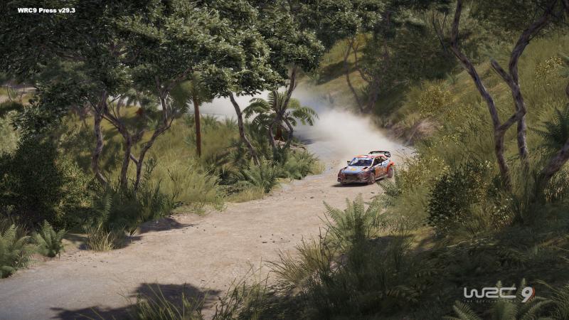 WRC 9 - Preview - Nieuw-Zeeland (Foto: Nacon)