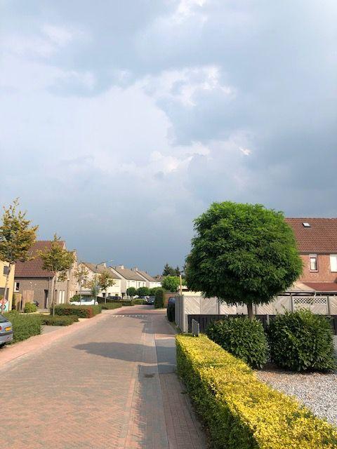 Bui nabij Haps (Foto: Charged)