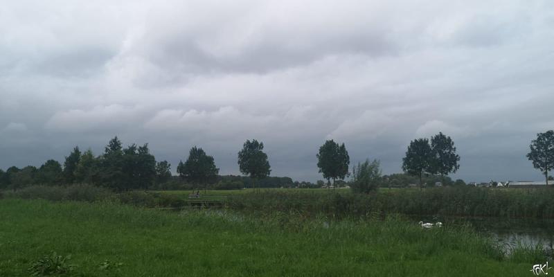 Rondje Ruigenhoek (4)  (Foto: FOK!)