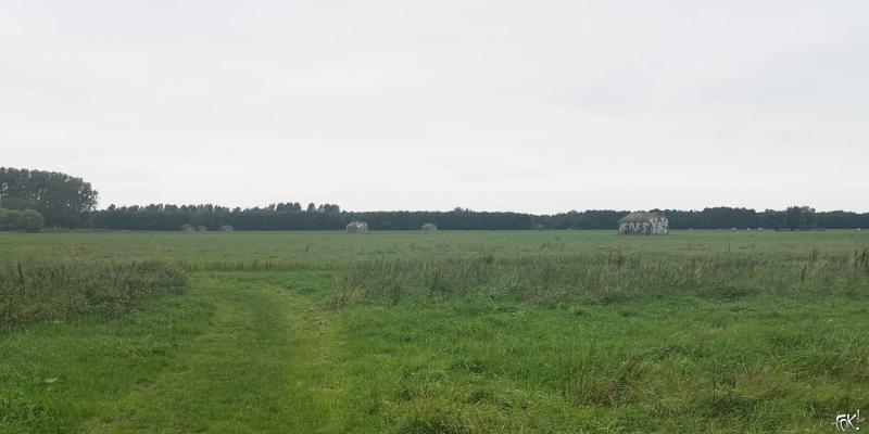 Rondje Ruigenhoek (11)  (Foto: FOK!)