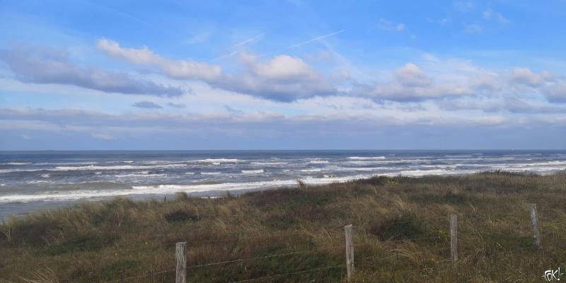 Zandvoort met zon (Foto: FOK!)