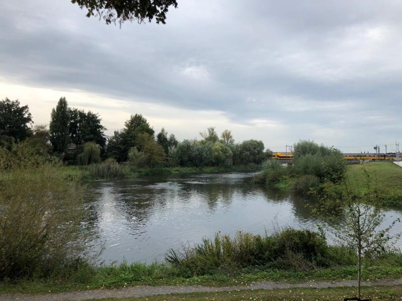 Den Bosch aan het water