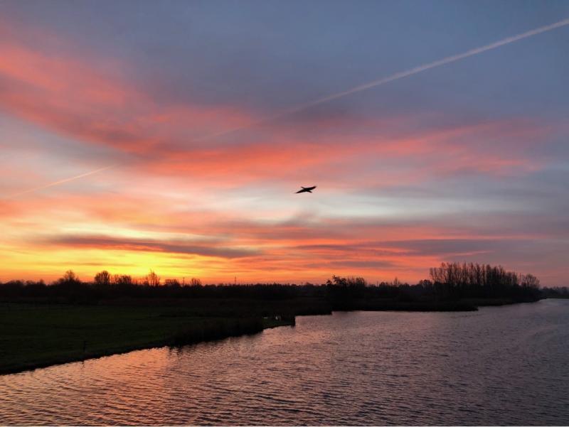 Gisteren een molen bij Westzaan. Vandaag dezelfde plek, maar dan zonder de molen..  (Foto: Charged)
