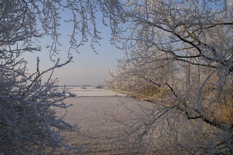 Winterse perikelen op Schouwen  (Foto: Scherpschutter)