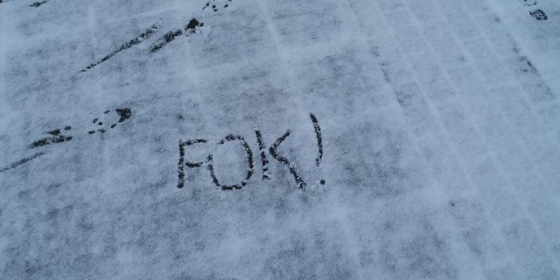 Eerste sneeuw gevallen in Nederland (Foto: DJMO)