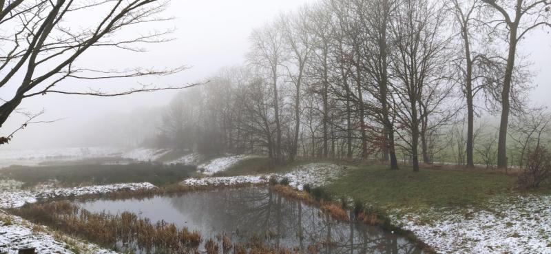 Sneeuw en mist in het Limburgse Heuvelland