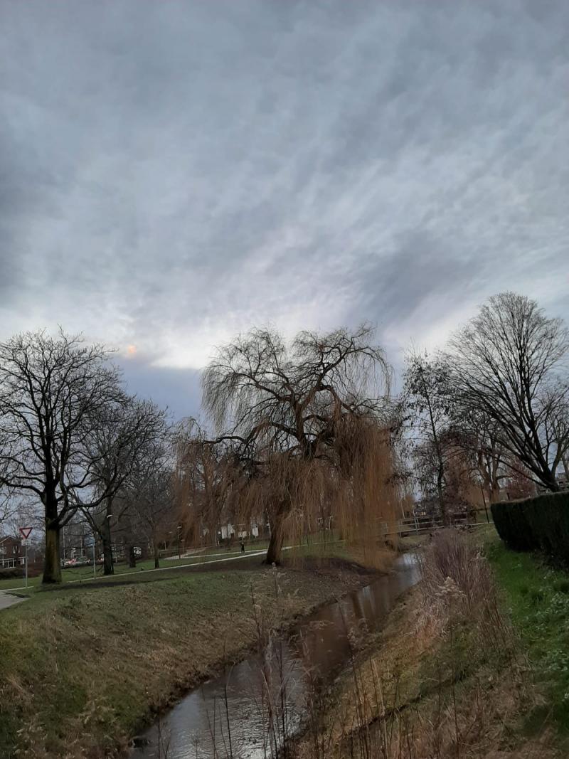 De ochtend is gekomen in Winterswijk (Foto: _UserName_)
