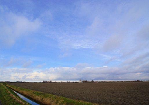 Schouwen (Foto: Scherpschutter)