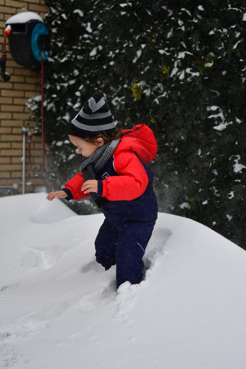 Sneeuwpret op FOK!  (Foto: ToT )