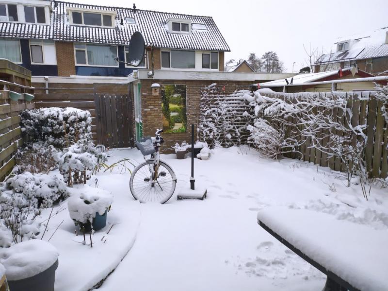 Sneeuwpret op FOK!  (Foto: Ghost_Buster)