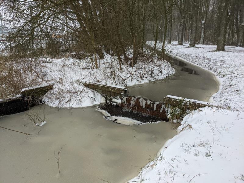Sneeuwpret op FOK!  (Foto: Babylon)