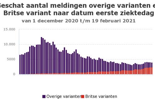 Geschat aantal meldingen COVID-19 varianten en Britse variant vanaf 1 dec 2020 (Foto: RIVM)