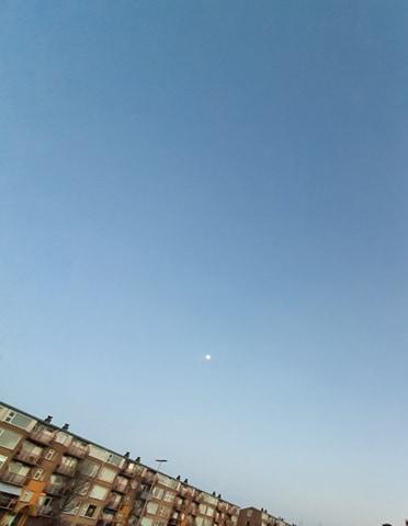 De maan aan heldere hemel (Foto: _UserName_)