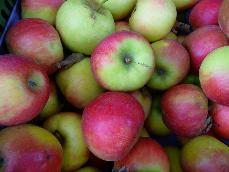 Het nutteloze feitje van de dag: veel appeltjes voor de dorst (WikiCommons/4028mdk09)