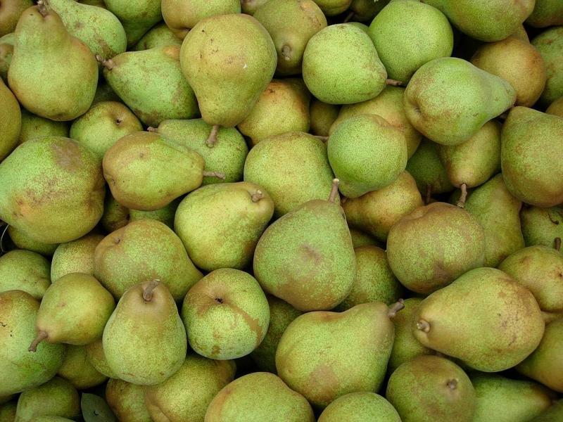 Het nutteloze feitje van de dag: appels met peren vergelijken (WikiCommons/Snoop at Dutch Wikipedia)