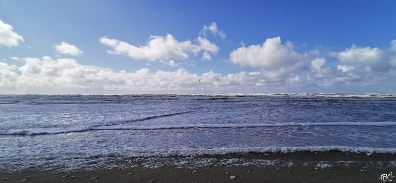 Eenzame surfer trotseert de golven in Egmond aan Zee  (Foto: FOK!)