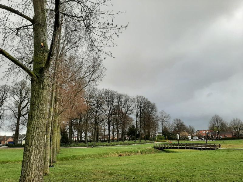 Het scholtenburgpark in Winterswijk onder de bewolking (Foto: _UserName_)