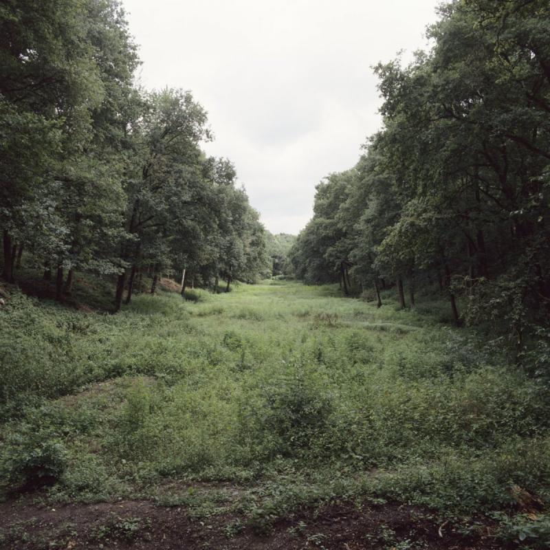 Resten van het kanaal nabij Venlo (WikiCommons/Kris Roderburg/Rijksdienst voor het Cultureel Erfgoed)