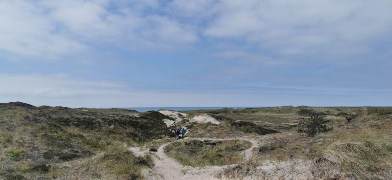 De duinen in Schoorl, waar het overwegend bewolkt was vanmiddag (Foto: DJMO)