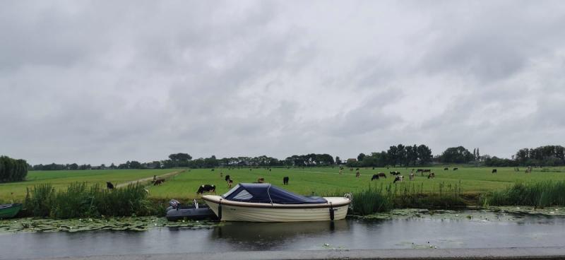 Het was grijs en grauw in omgeving Zoetermeer/Leiden. (Foto: DJMO)