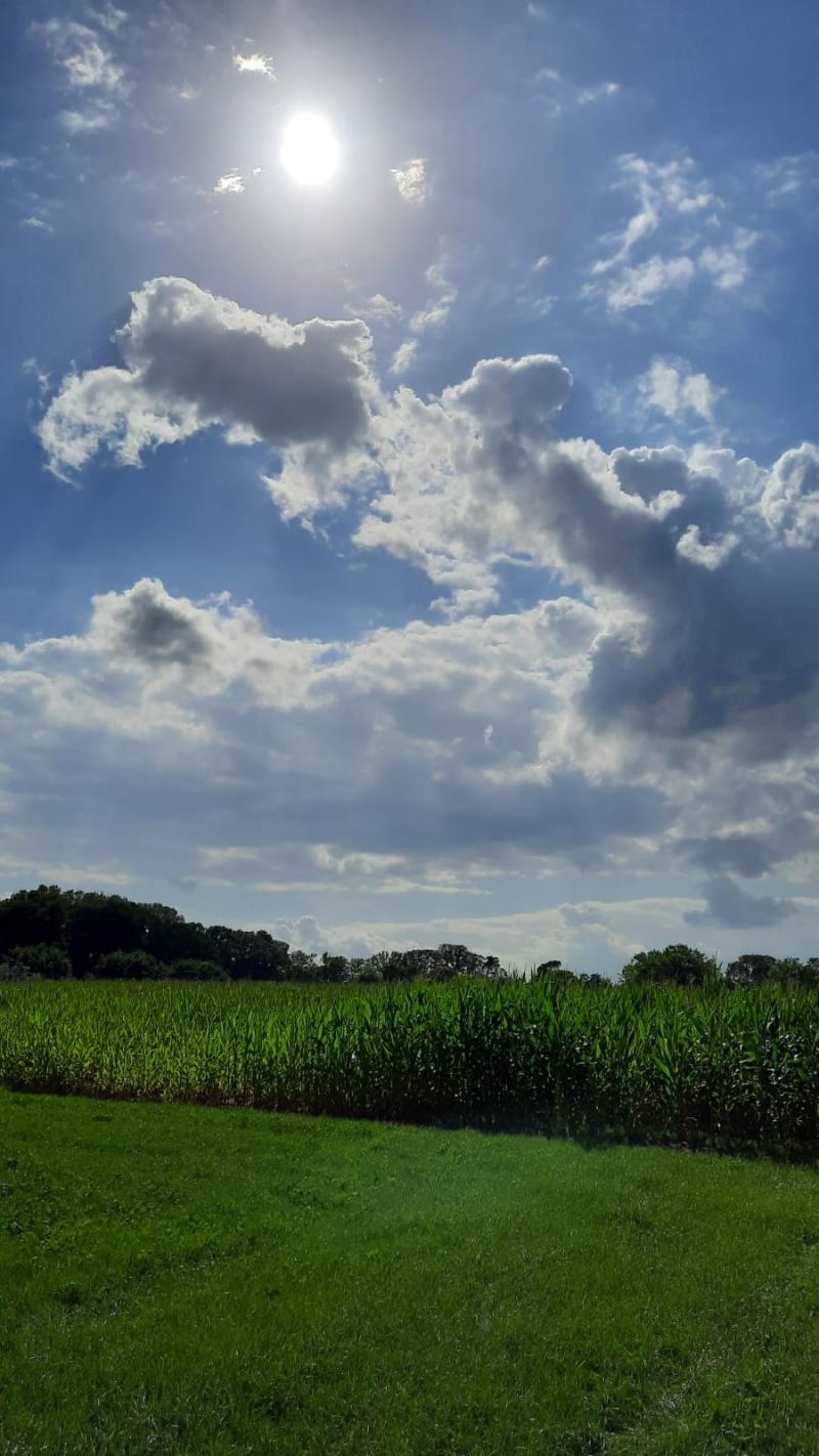 Winterswijk in de zon (Foto: De vriendin van User_Name)