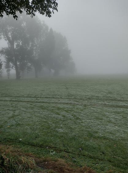 De dag begn ook in Kerkdriel met mist. (Foto: suijkerbuijk)